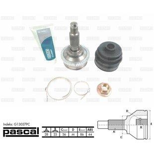Przegub napędowy zewnętrzny PASCAL G13037PC