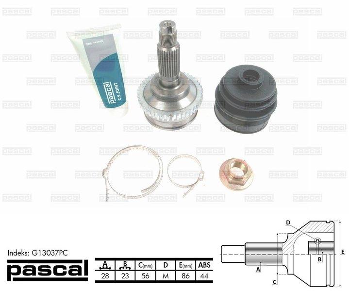 Przegub napędowy zewnętrzny PASCAL G13037PC - darmowa dostawa do 5000 warsztatów Motointegrator Partner i 170 sklepów Inter Cars